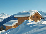 Ski Chalet Fleur in the Alps